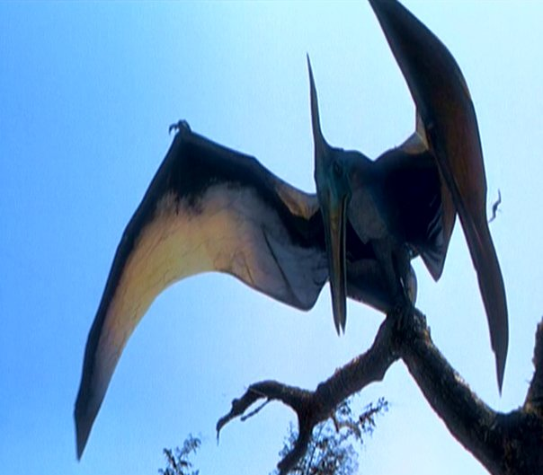 Pteranodon in Jurassic Park: the Lost World